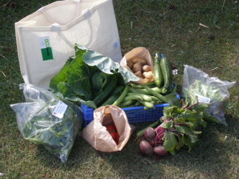 Vegetable Bag Deposit